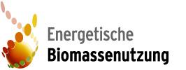 dbfz_biomassenutzung
